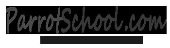 Parrot School